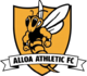 Alloa Athletic results,scores and fixtures
