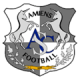 Amiens results,scores and fixtures