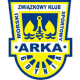 Arka Gdynia results,scores and fixtures