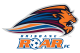 Brisbane Roar FC results,scores and fixtures