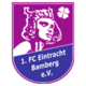 FC Eintracht Bamberg results,scores and fixtures