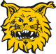 Ilves Tampere results,scores and fixtures