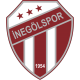 Inegolspor results,scores and fixtures
