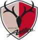 Kashima Antlers results,scores and fixtures