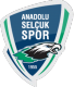 Anadolu Selcuksport results,scores and fixtures