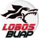 Lobos BUAP results,scores and fixtures