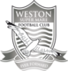 Weston-super-Mare results,scores and fixtures