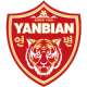 Yanbian FC results,scores and fixtures