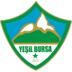 Yesil Bursa results,scores and fixtures